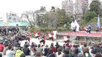 东京飞鸟山公园赏樱节传统歌舞(3)