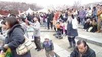东京飞鸟山公园赏樱节传统歌舞(7,完)