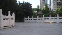 zhanghongaaa广场舞 坐着火车去拉萨 32步广场舞教学版 原创
