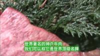 日本神户牛肉!享誉世界的名牌!