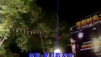 刘德华模仿秀夏日歌友会