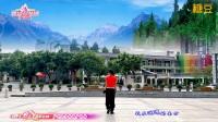 广州太和珍姐广场舞 山谷里的思念 水兵舞 背面