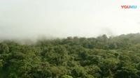4热带雨林
