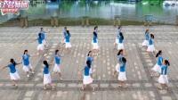 16步双人对跳广场舞《桃花情》正反面附口令分解教学