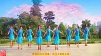 南阳和平广场舞系列--万树繁花(团队版后附广场版)