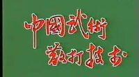 七十年代中国第一部散打教学片 标清