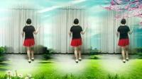 莲芳姐广场舞《一朵回忆心上开》32步