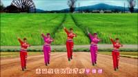 王妹儿广场舞(230号)在希望的田野上步子舞:红歌
