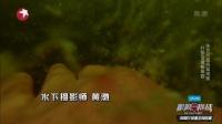 黄渤展现超强潜水能力 为救艺兴兄弟团拼尽全力 极限挑战 180708
