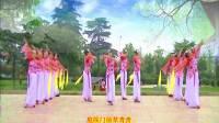 南阳和平广场舞系列--再秀《江南思韵》16人队形版