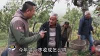 《聚焦三农》日月昌集团秋后电商忙