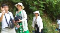 化州市杨梅镇福境中学八四届同学相聚桂林旅游活动剪辑