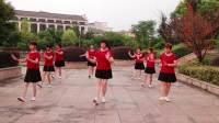 莲芳姐广场舞《男人的无奈》演示:团队