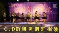 2018炫酷舞蹈暑期汇演《拉丁舞小班》