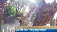 这段视频 展示了饲养员喂动物集锦 晨光新视界 180817