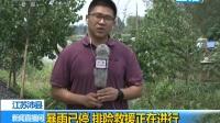 江苏沛县:暴雨已停 排险救援正在进行 180820