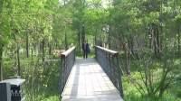 《在那东山顶上》.硖石东山森林公园