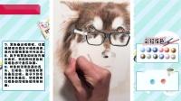 《彩铅猫狗绘 我的云养日记》阿拉斯加 p135