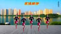 苏北君子兰广场舞系列--348--家住临沂