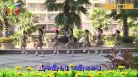 杨丽萍广场舞《我不是公主》原创32步入门舞蹈 广场舞视频教学在线观看