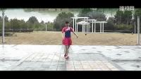 0001.-动动广场舞多得多 自由动感的舞步 分解动作教学 ..舞动