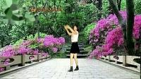 秋天雨广场舞【摇太阳DJ】32步子舞附教学编舞 秋天雨
