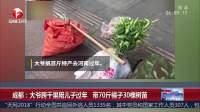 成都:大爷跨千里陪儿子过年 带70斤橘子30棵树苗 超级新闻场 20190124