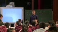 《酸的性質》浙教版九年級科學獲獎優質課教學視頻-林立晃