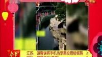 """江苏:游客误将手机当苹果投喂给棕熊 网友:最昂贵的""""苹果"""""""