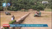 """亿亩荒滩有望稻花香,袁隆平在全国六地首次同时试种""""海水稻""""!"""