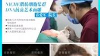 北京脂肪移植那些事京韩专业修复医院案例分享