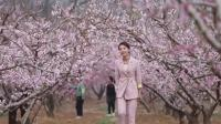 北京平谷第二十一届桃花节欢迎您
