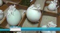 德国艺术家巧手剪出鸡蛋上的艺术世界 ,备受欢迎