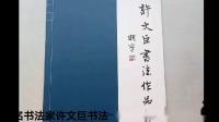 著名书法家许文巨书法专援传媒部部长王芳龙