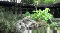 健康济川行·三、苏州留园·2019.5.16