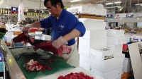 Why Bluefin Tuna Is So Expensive _ So Expensive