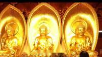 """佛教教育短片 珍贵开示!参禅打坐,虚云老和尚告诉你你如何""""用功下手"""""""