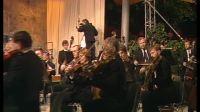1992柏林爱乐夏季温布尼森林音乐会 《法国之夜》-08拉德兹基进行曲