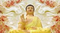 """佛教教育短片 谁的晚年不是一场""""血雨腥风""""?浅谈如何让晚年生活,不再凄凉!佛教教育短片"""