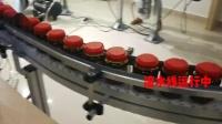 PTE-BS100视觉检测机瓶装食品检测与剔除.mp4