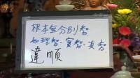 成观法师《唯识三十论颂义贯》(11-20)