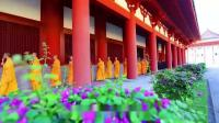 """佛教教育短片 重要!四種力量,斬""""邪淫""""!痛苦排最後,""""它""""第一!"""