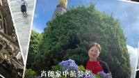 衡阳花鼓戏《三姑记·哀川调》邓红菊