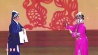 梨园春 20200105期《梨园春》2020年新年戏曲晚会