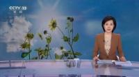中央气象台:未来三天 江南华南等地仍有高温