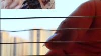 郭咚咚《月亮》朱丽叶指弹吉他弹唱摇指技巧吉他教学
