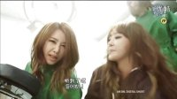 121215 tvN SNL Korea Brown Eyed Girls 整容小曲【韩语中字】