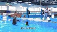 好戏在后台第八集 -- 海豚老友记(上集) (HD 1080)