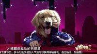 我是传奇2欢乐季第二期——05人与狗