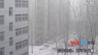 【拍客】实拍2月28号入春郑州突降暴雪袭击